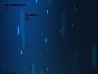 Transparency Advisors LLC