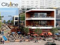 CyLine Partners, LLC