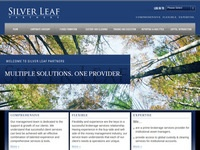 Silver Leaf Partners, Inc