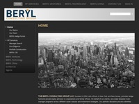 The Beryl Consulting Group LLC